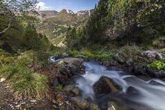 Riu del Siscaró, Principat d'Andorra (kike.matas) Tags: canon canoneos6d canonef1635f28liiusm kikematas riudelsiscaró siscaró valldincles canillo andorra andorre principatdandorra pirineos paisaje rio agua nature montaña bosque arboles camino senderismo excursión hiking lightroom6 андорра
