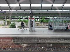 Mainz Hbf (onnola) Tags: deutschland germany bahn deutschebahn db bahnhof station bahnsteig platform gleis track eisenbahn railway passagier passenger reisende mainz fahrrad bicycle bike