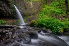 Ponytail Falls (daviddalesphoto) Tags: ponytailfalls waterfall oregon columbiarivergorge cascade stream longexposure landscape historiccolumbiariverhighway