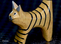 A cat with curves (Anavicor) Tags: macro cat chat gato madera bois wood fusta legno madeira holz monday lunes lundi lunedi montag dilluns segundafeira curves curvas nikon d5300 tamron90mm anavillar villarcorreroana anavicor