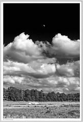 IMGP0731-sw-Rahmen-kl (fredericfromage) Tags: swbwmonochromhimmelwolkenbäumemünsterlandfelder mond pentaxflickraward pentaxart