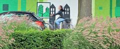 Lichte tegenwind (Merodema) Tags: vrouw woman fiets bicycle street city stad buiten