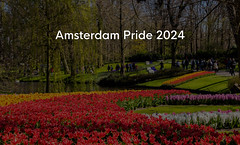 "Blooming red and yellow tulips in Keukenhof garden with visitors, next to title  ""Amsterdam Pride 2024"" (verchmarco) Tags: garden spring park lgbt flowers schwul gay csd pride nederlands keukenhof red holland amsterdam tulips tulip tulpe nature natur flower blume tree baum leaf blatt noperson keineperson garten outdoors drausen season jahreszeit landscape landschaft bright hell wood holz color farbe growth wachstum flora summer sommer hyacinth hyazinthe springtime frühling bulb birne2019 2020 2021 2022 2023 2024 2025 2026 2027 2028 2029 2030 market fence owl nikkor colour eos dusk decoration pet christmastree"