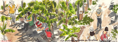 190616jardinborderouge (Vincent Desplanche) Tags: croquis carandache sketch sketchbook sketching seawhiteofbrighton seawhitesketchbook neocolor neocolorii neocolor2 occitanie usk uskfrance uskoccitanie urbansketchers toulouse borderouge jardindumuseum museumdetoulouse usktoulouse