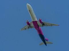 Airbus A321-231 - HA-LTF - Wizz Air - Nijnsel - Noord-Brabant - NL (Frans Berkelaar) Tags: sintoedenrode noordbrabant nederland nijnsel nl airbusa321231 wizzair haltf eindhovenairport