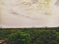 Monday Morning! Coming Soon Monsoon.. #monday #funday #funny #week #morningpic #morning #goodmorning #photooftheday #photo #photo_by_me #photoday #photographers #photoshop #photoideas #photolovers📷 #lovephotography #mobile #nexus5x #instafamily #in (Vipul Vashisth) Tags: photooftheday week vipul sunshine instafamily sunshines clouds instagram urbanview funday goodmorning greenland cloud photographers greenspace photobyme instaphoto morningpic vero funny views monday insta nish awesomeearthpix photoday facebook mobile instalover tree photo photoshop photoideas photolovers morning lovephotography nexus5x vipulvashisth