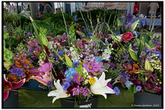 Flowers at the market (James0806) Tags: washington districtofcolumbia usa farmersmarkets flowers