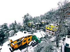 #Travel #india #Shimla #Snowfall #colourfulhouse (watsonchain2194) Tags: travel india shimla snowfall colourfulhouse