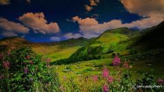 summer has come to the mountains / 170619031 (devadipmen) Tags: kaçkardağları kaçkarmountains landscapephotographer naturalpark naturephotographer trabzon türkiye