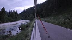 Parallel-Welten (Dioscorea Mexicana) Tags: ybbs ybbstal radweg niederösterreich österreich austria