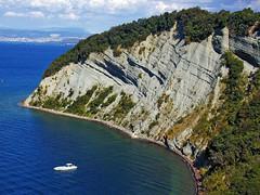 Strunjan klif (Vid Pogacnik) Tags: sea cliff landscape outdoors bay coast hiking slovenia slovenija adriatic istria istra littoral flysch strunjan