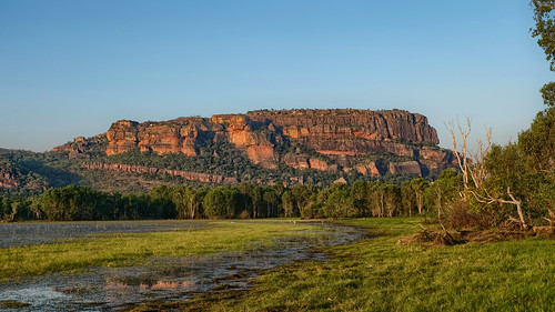 Anbangbang Billabong, Nourlangie Creek, Kakadu National Park, NT, Australia - in late afternoon sunlight