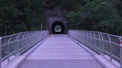 Recta Sequi (Dioscorea Mexicana) Tags: ybbs ybbstal radweg niederösterreich tunnel eisenbahn österreich