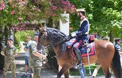 Guardia Real - Spanish Royal Guard (DAGM4) Tags: españa horse caballos sevilla andalucía spain espanha europa europe military espana militar gr et espagne spanien seguridad espagna espainia espanya ejércitodetierra spanisharmy guardiareal spanishroyalguard difas2019