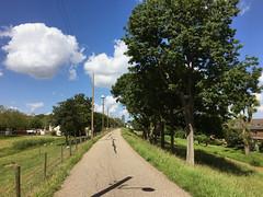 Welhoeksedijk (Dimormar!) Tags: dijk welhoeksedijk hoogvliet natuur voorjaar lente spring fietstocht
