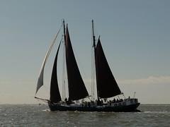 Noordvaarder (Alta alatis patent) Tags: noordvaarder sailing charter