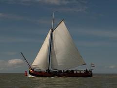Albatros Makkum (Alta alatis patent) Tags: albatros makkum charter sailing