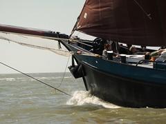 Noordvaarder (Alta alatis patent) Tags: sailing noordvaarder charter guests