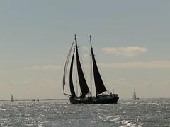 Noordvaarder (Alta alatis patent) Tags: sailing noordvaarder charter