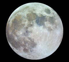 June's Full Moon (treydavisonline) Tags: nikon d7100 telescope astrophotography full moon celestron 4se sky