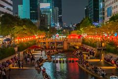 Cheonggyecheon Festival (Tachial) Tags: fe lce7rm3 서울 street sony seoul fullframe korea sel85f14gm a7r3 소니