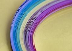 Paper  Curves (Helen Orozco) Tags: macromondays curves quillingpaper paper colours hmm macro