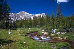 The Unicorns of Yosemite (RobertCross1 (off and on)) Tags: a7rii alpha ca california emount elizabethlake fe1635mmf4zaoss highsierra ilce7rm2 longexposure sierranevada sierras sony unicorncreek unicornpeak yosemite yosemitenationalpark bluesky clouds creek forest fullframe hiking landscape mirrorless mountains stream trees water tuolumne
