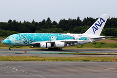 All Nippon Airways | Airbus A380-800 | JA382A | Flying Honu livery | Tokyo Narita (Dennis HKG) Tags: aircraft airplane airport plane planespotting staralliance canon 7d 100400 tokyo narita rjaa nrt allnipponairways allnippon ana nh japan airbus a380 a380800 airbusa380 airbusa380800 ja382a