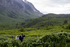 Summer Wedding Season (aaronrhawkins) Tags: wedding newlyweds candids husband wife young love bride provo canyon flowers wildflowers mountain green engagement pose fence lush season bridal gown picturesque utah aaronhawkins