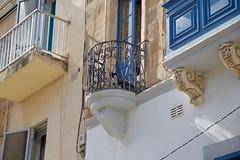 The Maltese Cat (herellybelly) Tags: cat kitty pet maltese malta mediterranean sliema balcony architecture building sun sunny summer up meow