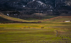 Yellow in the Valley (DavidHenkins) Tags: colorado mountains trees pine stream farm grass pasture fence nature landscape