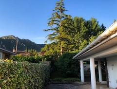 Montejurra desde Ayegui (eitb.eus) Tags: eitbcom 16599 g1 tiemponaturaleza tiempon2019 monte nafarroa ayegui josemariavega