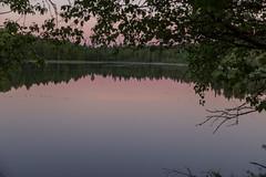 Beautiful nigth sky (Toftus Photography) Tags: morjärv norrbottencounty sweden sverige norrbotn kalix småsel se farve color landscape landskap outdoor nature canon eos 5d mark iv