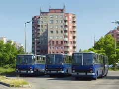 Ikarus 280.49 #08-80 (FGKM) Tags: budapest bkvbudapest ikarus 28049 0880 linia20e 1835 0863 káposztásmegyer szilaspatak garázsmenet