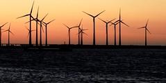 Sunrise in Zeeland, Netherlands (Joseph Hollick) Tags: netherlands sunrise zeeland windturbine