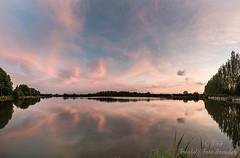 After the sun set, this pink spectacle arose (Friedels Foto Freuden) Tags: sandstedt teich spiegelung bäume wolken clouds rosa blauestunde sonnenuntergang sunset canond80