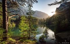 Green Lake High Tide (Wim Air) Tags: austria green lake grünerseeseasteiermarkstyriaaustriaösterreichbernhardw wimair landscape sun tree alps