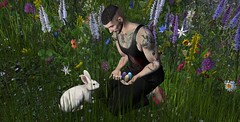 EGGS AND RABBIT ... (Musaax) Tags: 7ds cerberusxing cx {rp} 7deadlyskins backdrops belleza clefdepeau jace jake logo poses reinaphotography samia secondlife tattoos thisiswrong volkstone bentomeshavatar sl musaax samiastoreposesshapes samiaposesshapes mesh tattoo samiaa
