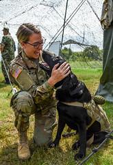 Massachusetts National Guard