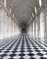 Royalty (Micaelabrunero) Tags: gallery galleria galleriadidiana elegance palace piedmont italia italy old royalty reggiadivenariareale venaria corridoiodidiana diana
