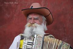 Suonatore di fisarmonica - Accordion player (francescociccotti1) Tags: polonia varsavia turismo artistidistrada buskers fisarmonica piazza barba