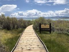 Mono Lake Tufa State Natural Reserve (valeehill) Tags: oths overthehillsisters roadtreking monocounty monolaketufastatenaturalreserve