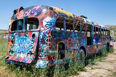 Last stop, Washtucna (trochford) Tags: thatnwbus bus paintedbus schoolbus abandoned tagged painted decorated colorful blankenshipfarms washtucna wa washington usa us unitedstates canon canon6d ef24105mmf4lisusm ef24105 inlandnorthwest