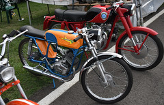 Tecnomoto Squalo (baffalie) Tags: moto ancienne vintage classic old bike motorbike retro expo italia sport motocycle racing motor show collection club course race circuit italie bologna fiera