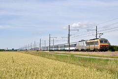 BB 26026 et Artesia vers Seurre (Alexoum) Tags: sncf fs train railway bb26000 artesia seurre bourgogne couchettes bresse