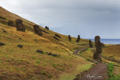 A site with 397 moai (marko.erman) Tags: ancient remote isolated volcano voclanic tuff carved statues scultpures moai ahu beautiful quarry extraction outside travel far away sony ranoraraku rapanui easterisland pacificocean lostcivilisation burried
