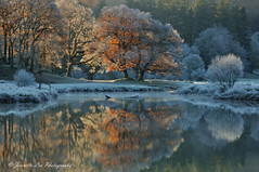 Autumn Meets Winter (jeanette_lea) Tags: landscape united kingdom river brathay elterwater the lake district cumbria sunrise dawn autumn winter frost mist light colours reflections trees grass