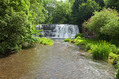 Rutter Falls (Adam Swaine) Tags: rutterfalls rivers river waterfalls englishlandscapes englishrivers english england riverbec cumbria northeast beautiful nature britain british canon trees flora naturelovers naturesfinest uk ukcounties rural 2019