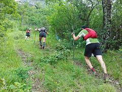 drayes 2019 (36) (association.yapasphoto) Tags: courseapied trail forêt brouillard montée chatelus vercorscoulmes france
