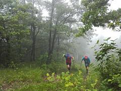 drayes 2019 (16) (association.yapasphoto) Tags: courseapied trail forêt brouillard montée chatelus vercorscoulmes france